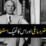 Common-Sense-Hazir-Dimaghi-Quaid-e-Azam-at-London-University-1